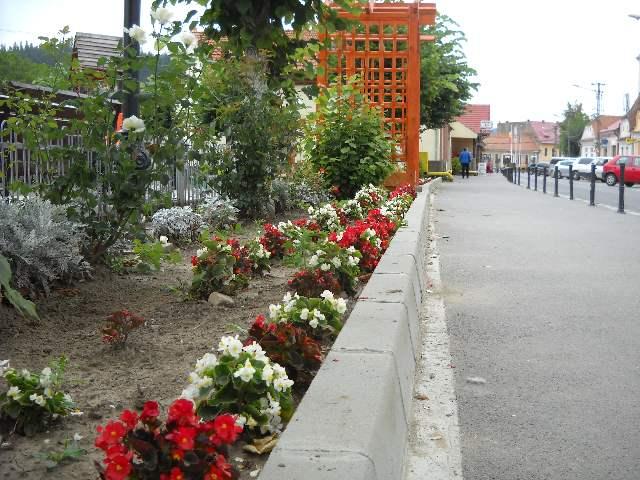 parc centru